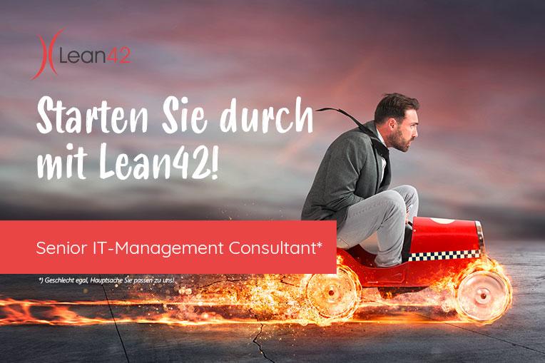 Senior IT-Management Consultant