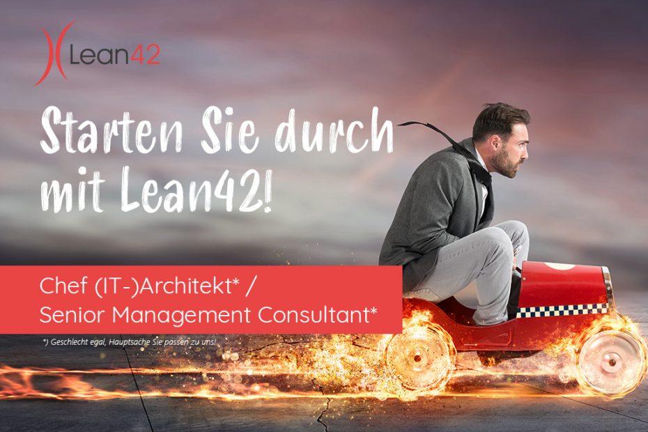Chef (IT-)Architekt / Senior Management Consultant