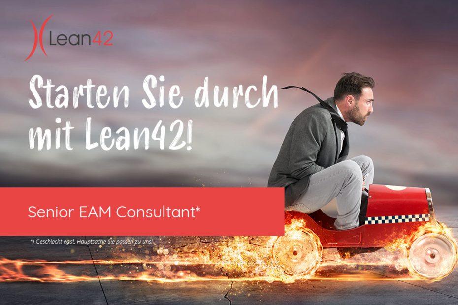 Senior EAM Consultant